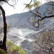 Picture of the Day: Crater at Tangkuban Perahu Volcano in Indonesia