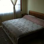 20111125-110336.jpg