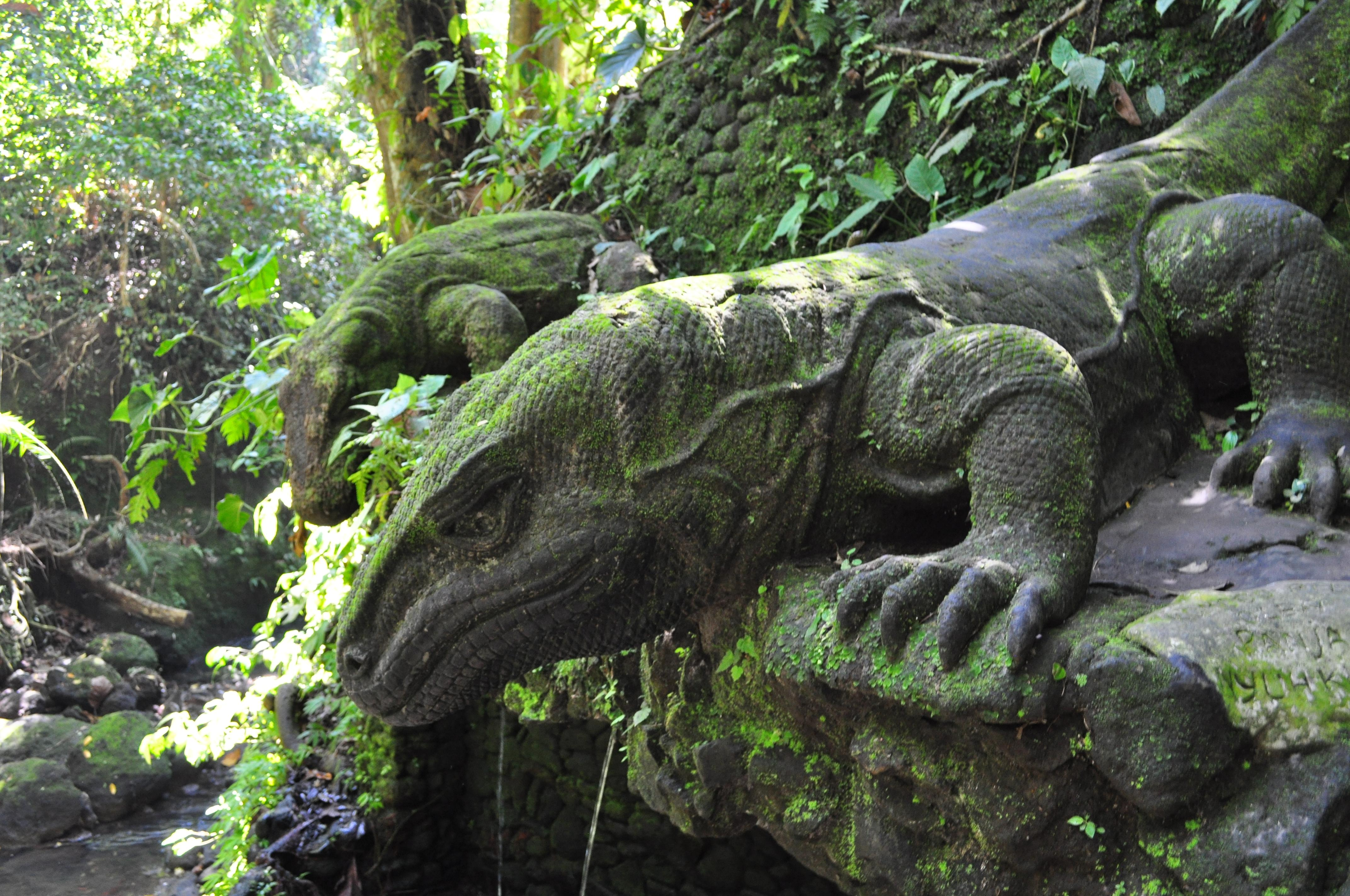 the komodo dragons of ubud bali monkey sanctuary